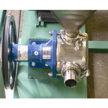 Liverani Stainless Steel Pump Modified for Pumping Pomace
