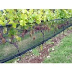 Vineyard Zone Netting